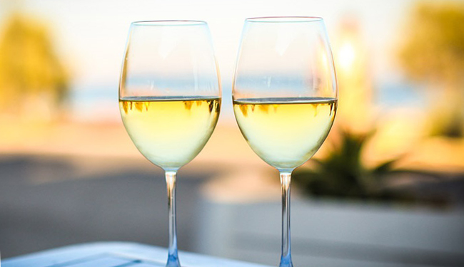 Two glasses of wine in a vineyard