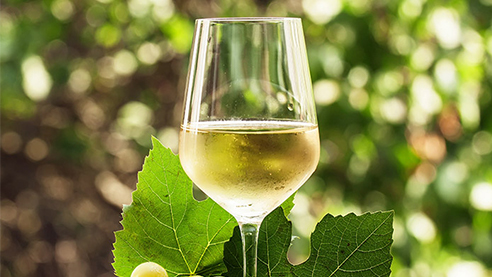 A glass of white wine with wine grapes outside