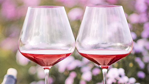 Two glasses of red wine on a table outside with lavender flower blossoms in the background