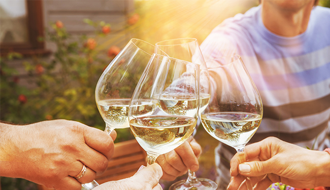 Glasses of wine in a vineyard