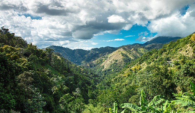 Mountains in Jamaica