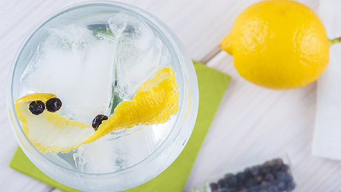 A close up shot of gin with garnishes and ice