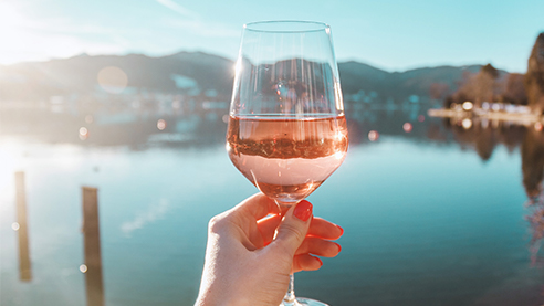 Two glasses of rose in a vineyard