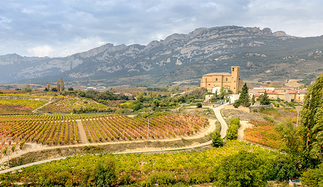 Spain wine country